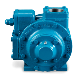 Blackmer GNX Sliding Vane Pump Front-Facing