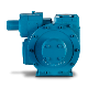 Blackmer Magnes Sliding Vane Pump
